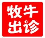 深圳市牧牛国际网络科技有限公司