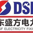 深圳东盛方电力科技有限公司