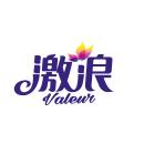 東莞市激浪洗滌科技有限公司