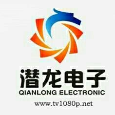 广州潜龙电子科技有限公司