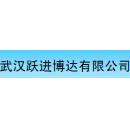 武汉跃进博达系统工程有限公司