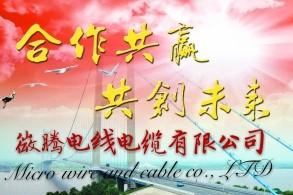 長沙微騰電線電纜有限公司