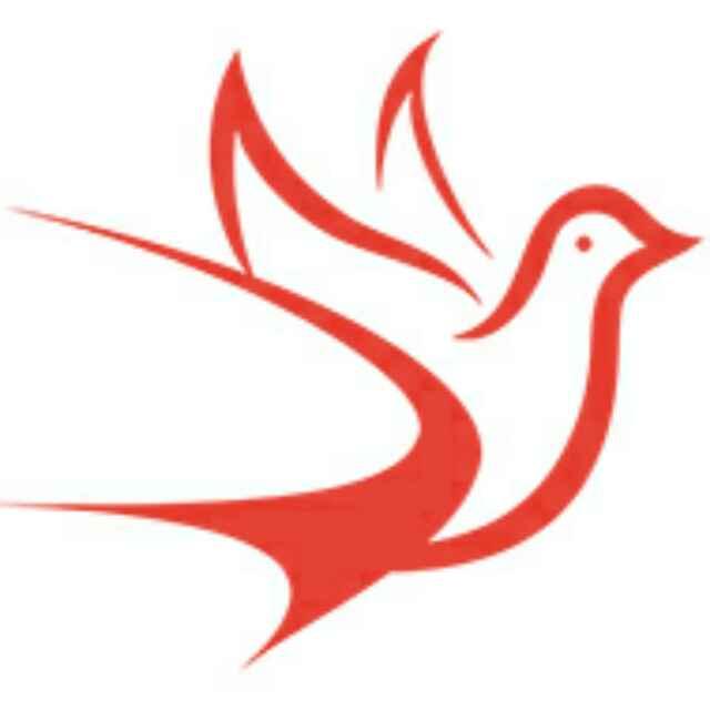 新疆知知鸟知识产权服务有限公司