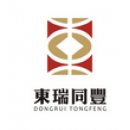 深圳东瑞同丰金融服务有限公司