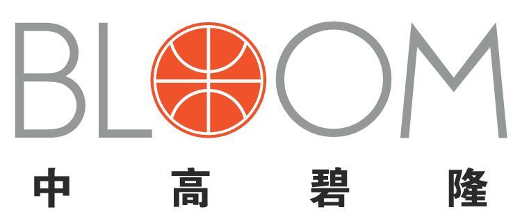 中高碧隆(北京)体育工程建设有限公司