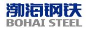 渤海钢铁集团有限公司