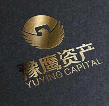 河南豫鹰资产管理有限公司