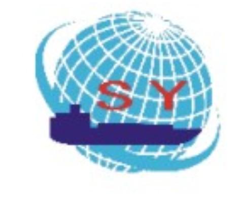 广州市赛悦国际货运代理有限公司