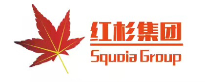 红杉社会稳定风险评估(淮安)有限公司广州分公司