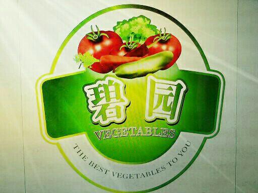 昌乐碧园瓜菜专业合作社