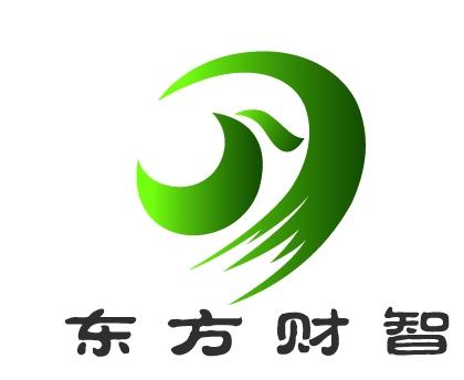 北京东方财智投资咨询有限公司