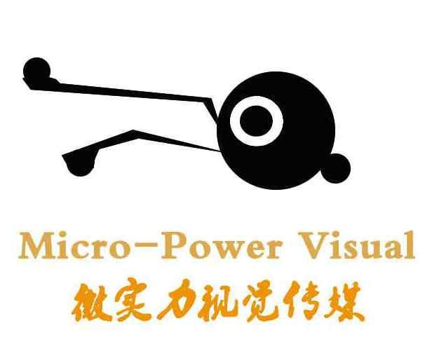 武漢微實力視覺傳媒有限公司