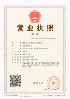 武汉兴合力消防安全有限公司