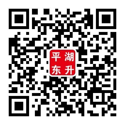 平湖东升汽车有限公司