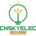 深圳市西凯照明科技有限公司