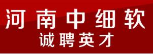 河南中细软知识产权代理有限公司