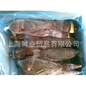 波斯顿龙虾(生冻波斯顿龙虾)
