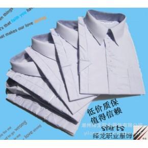 涤棉65%棉面料 商务正装男士衬衣