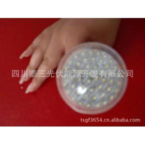 48株3.3W高亮度LED节能灯