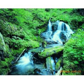 摄影风景系列装饰画   给你带来大自然的感觉