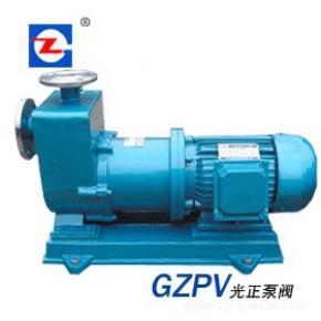 光正ZCQ型自吸磁力泵 自吸磁力泵