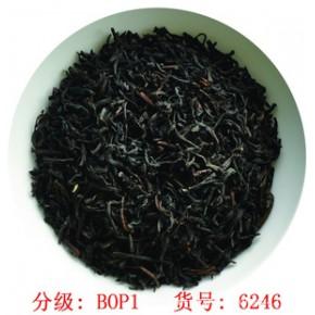 锡兰红茶BOP1-斯里兰卡红茶-条红茶-BOP1