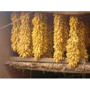 优质玉米 黄玉米 8.0(%)