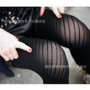 2012新春夏款日本原单 高弹力斜条纹连裤袜 显瘦成人袜打底裤批发