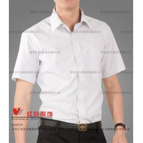 气质型男衬衣-郑州红叶服饰有限公司