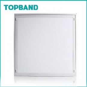 LED平板灯 220(V)