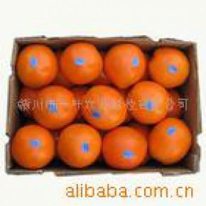 原产地优质80MM以上赣南脐橙-欢迎团购