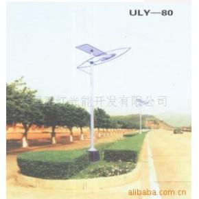 太阳能路灯 高亮度节能 30(W)
