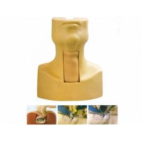 高级气管切开插管训练模型|气管切开模型|气道管理训练模型