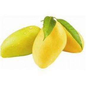 芒果核提取物