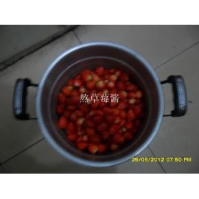 红颜草莓苗,北京草莓苗,草莓苗草莓,草莓种苗基地