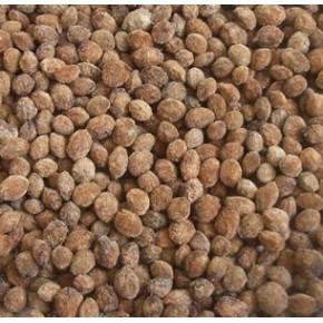 批发:杨梅种子,杨梅种子价格,杨梅种子批发价格,杨梅种子