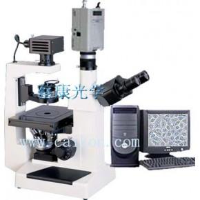 倒置显微镜