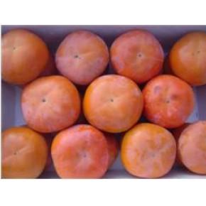 正大园艺乐义甜柿优质甜柿种苗获国家优秀奖