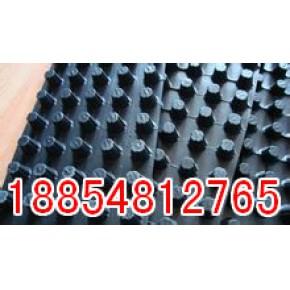 湖南长沙排水板新产品展示畅销全球