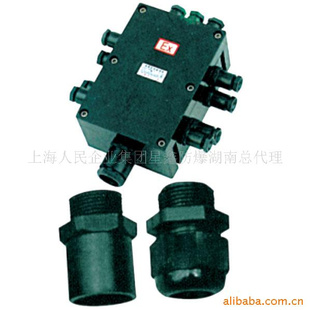 防爆接线盒,bxj8030系列防腐防爆接线箱