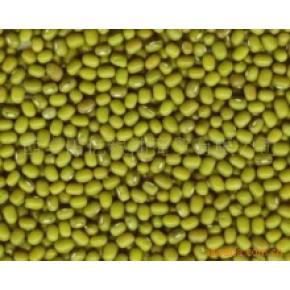 提供芸豆、大豆等各种豆类的进出口商检通关服务
