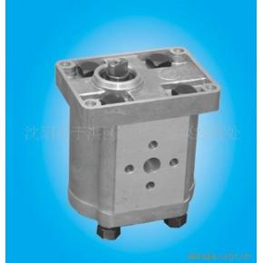 低压齿轮油泵 铸铝 电动