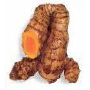 专业生产天然色素-姜黄E100-姜黄色素-食用色素着色剂