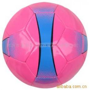 足球 足球比赛用品 2010足球