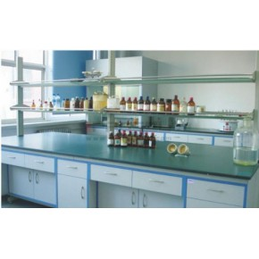 青海试剂柜价格  西宁试剂柜厂家  首选谱施实验设备