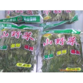 刺嫩芽 蕨菜