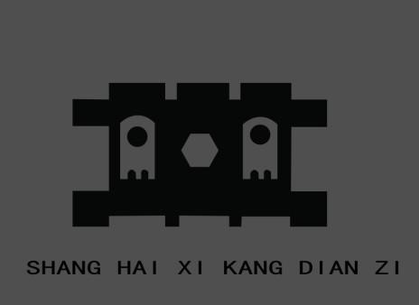 上海希康电子有限公司