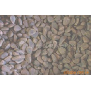 【批量供应】供应优质生松籽