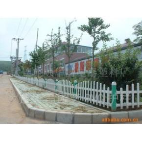 私家花园 pvc 小区,花园,别墅