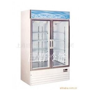 冷藏柜 双门冷藏柜 单门冷藏柜 水果冷藏柜 熟食冷藏柜
